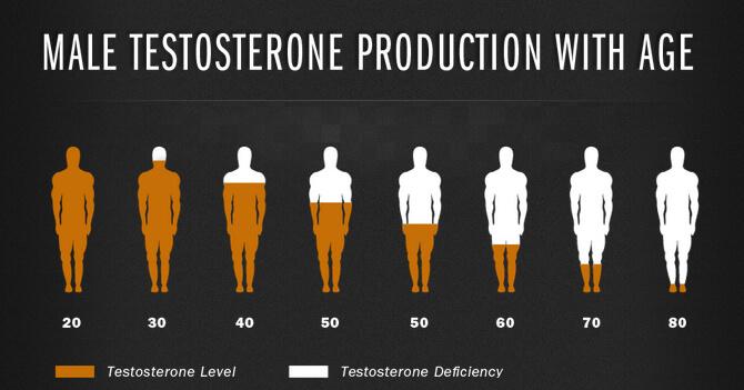 testosterone-production.jpg